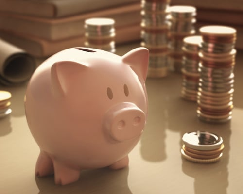 Saving for that special something ....Piggy Bank