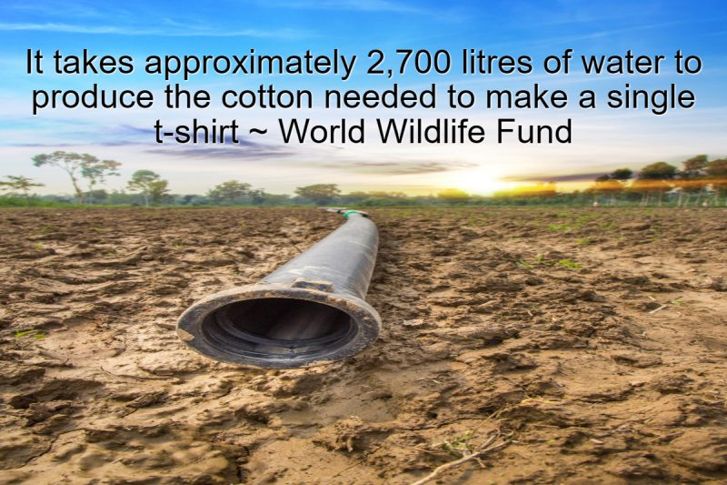 It takes approximately 2,700 litres of water to produce the cotton needed to make a single t-shirt ~ World Wildlife Fund