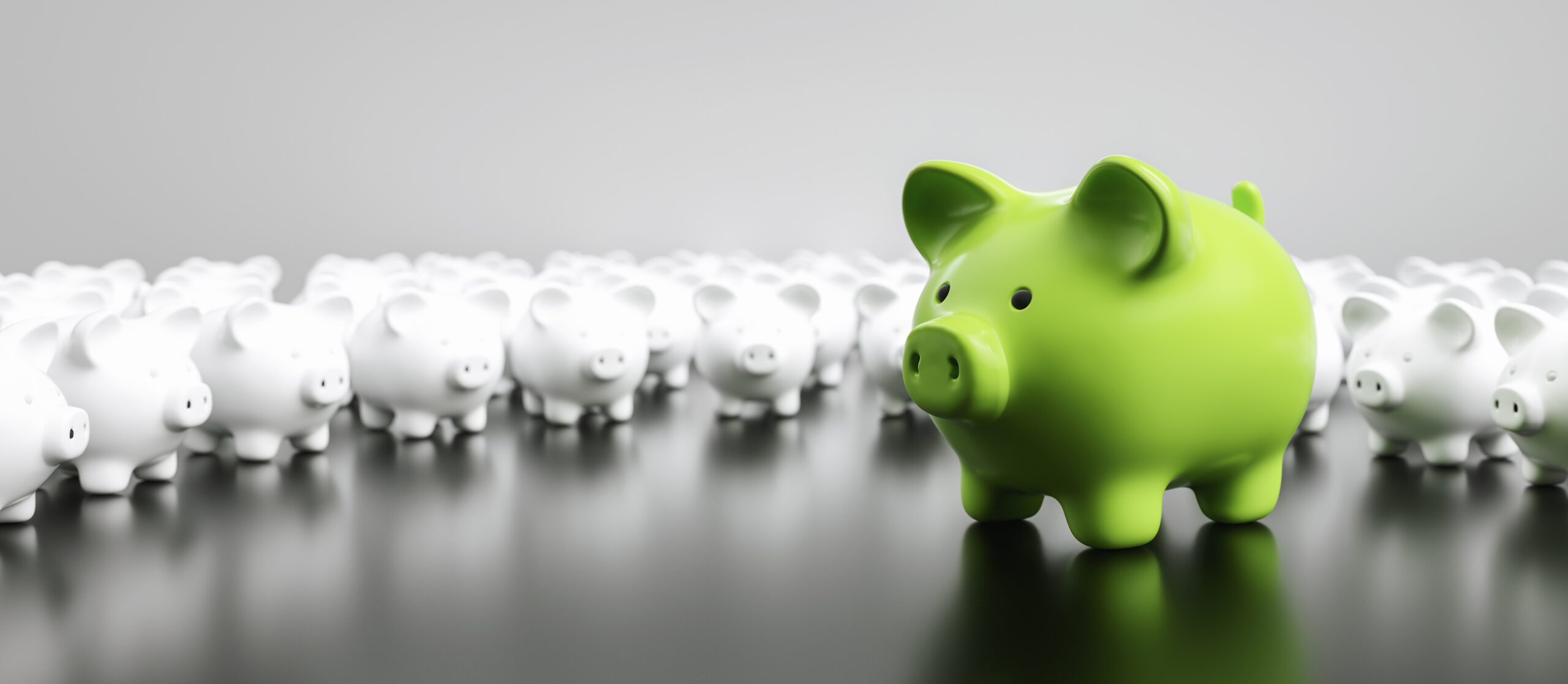 5 Tips to Green Investing
